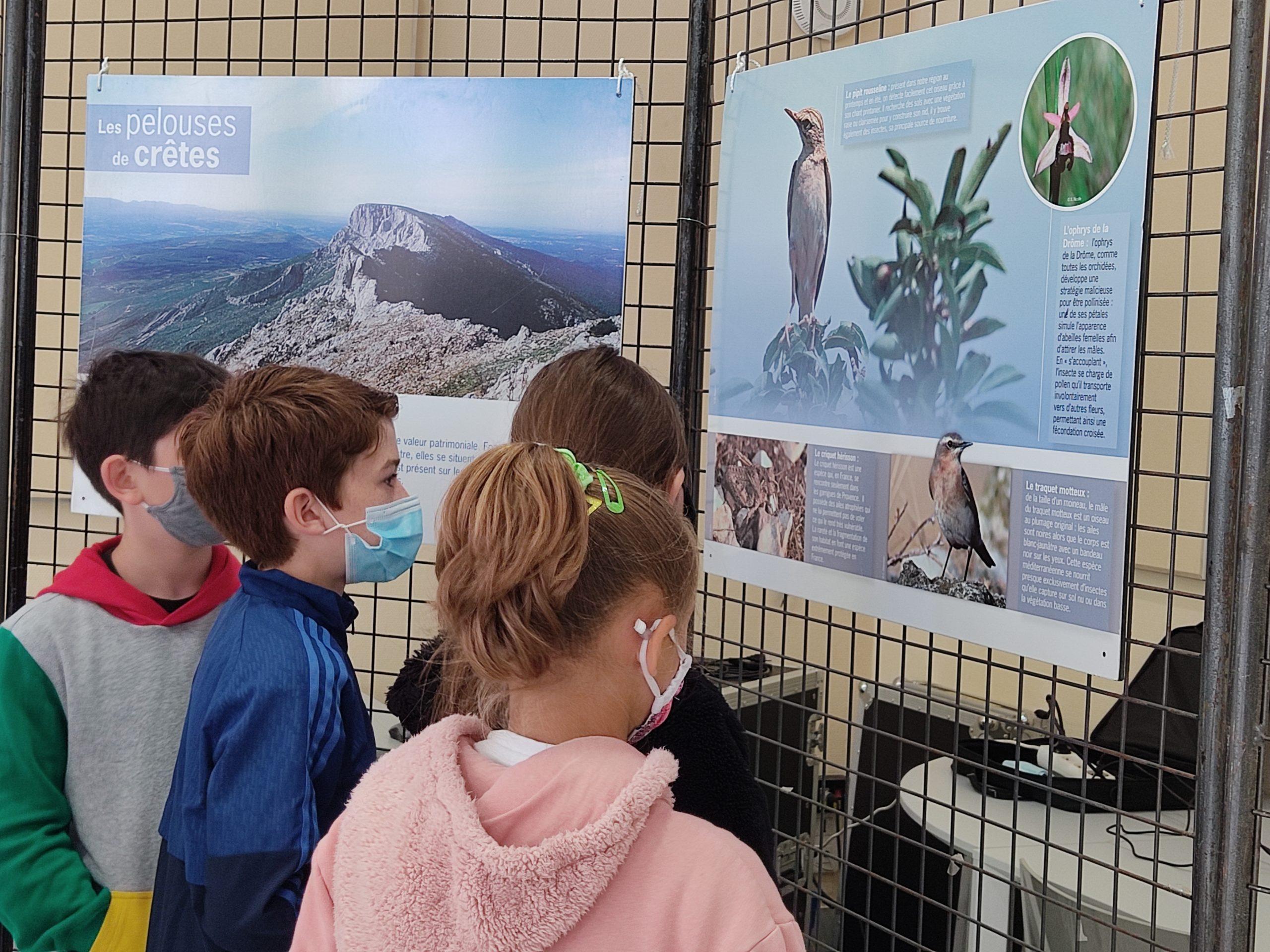 ecoles sainte marie fuveau biodiversité expo 4